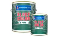Fleet color Epòxico